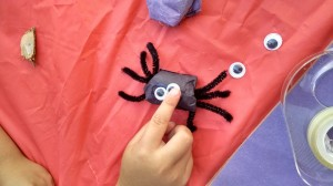 googly eyed spider